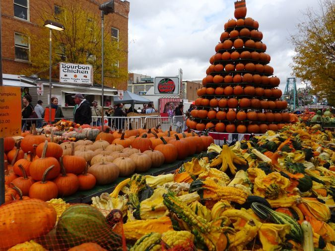 Pumpkin Show display